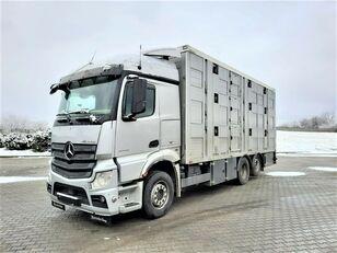 شاحنة نقل المواشي MERCEDES-BENZ Actros 2543 6x2